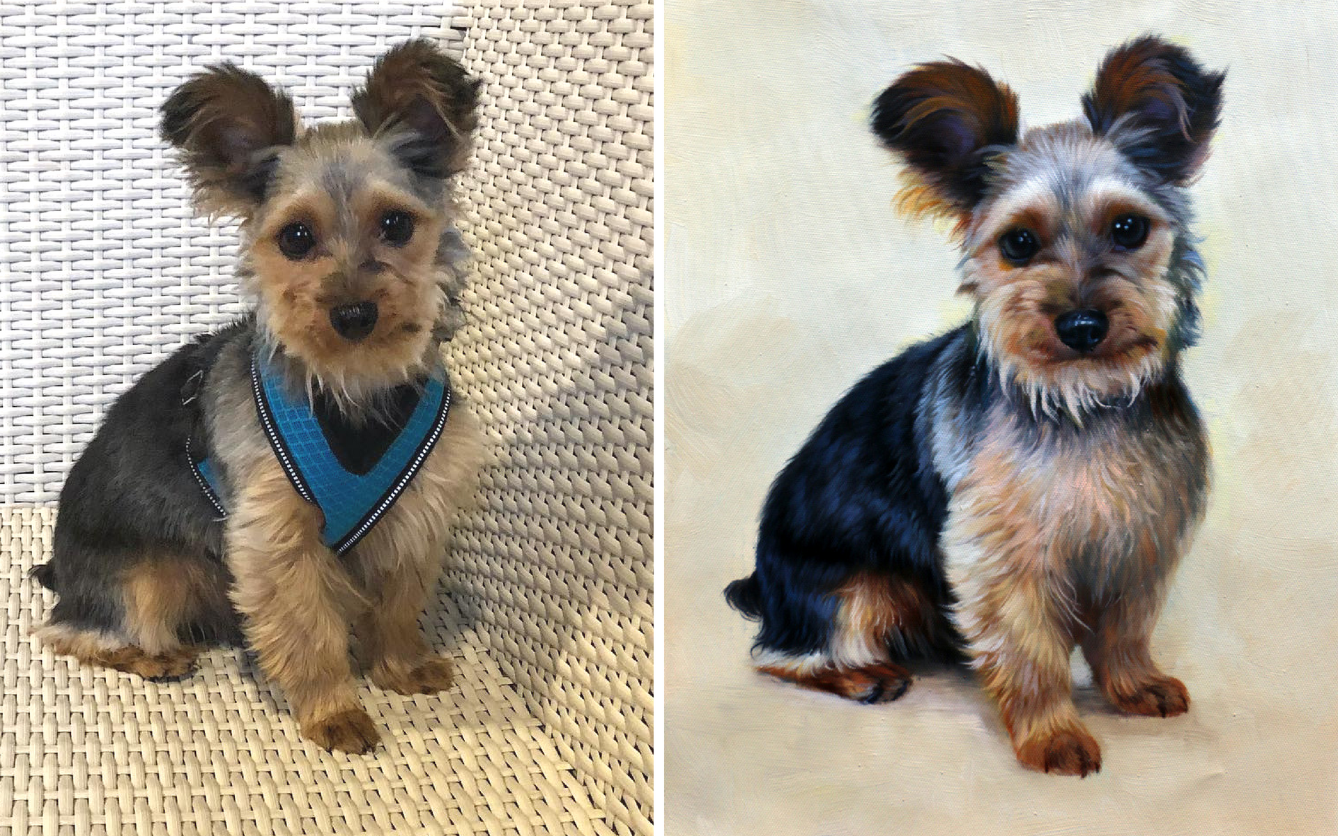 This Adorable Yorkie Portrait Is Proof You Need An Oil Painting Of Your Pet