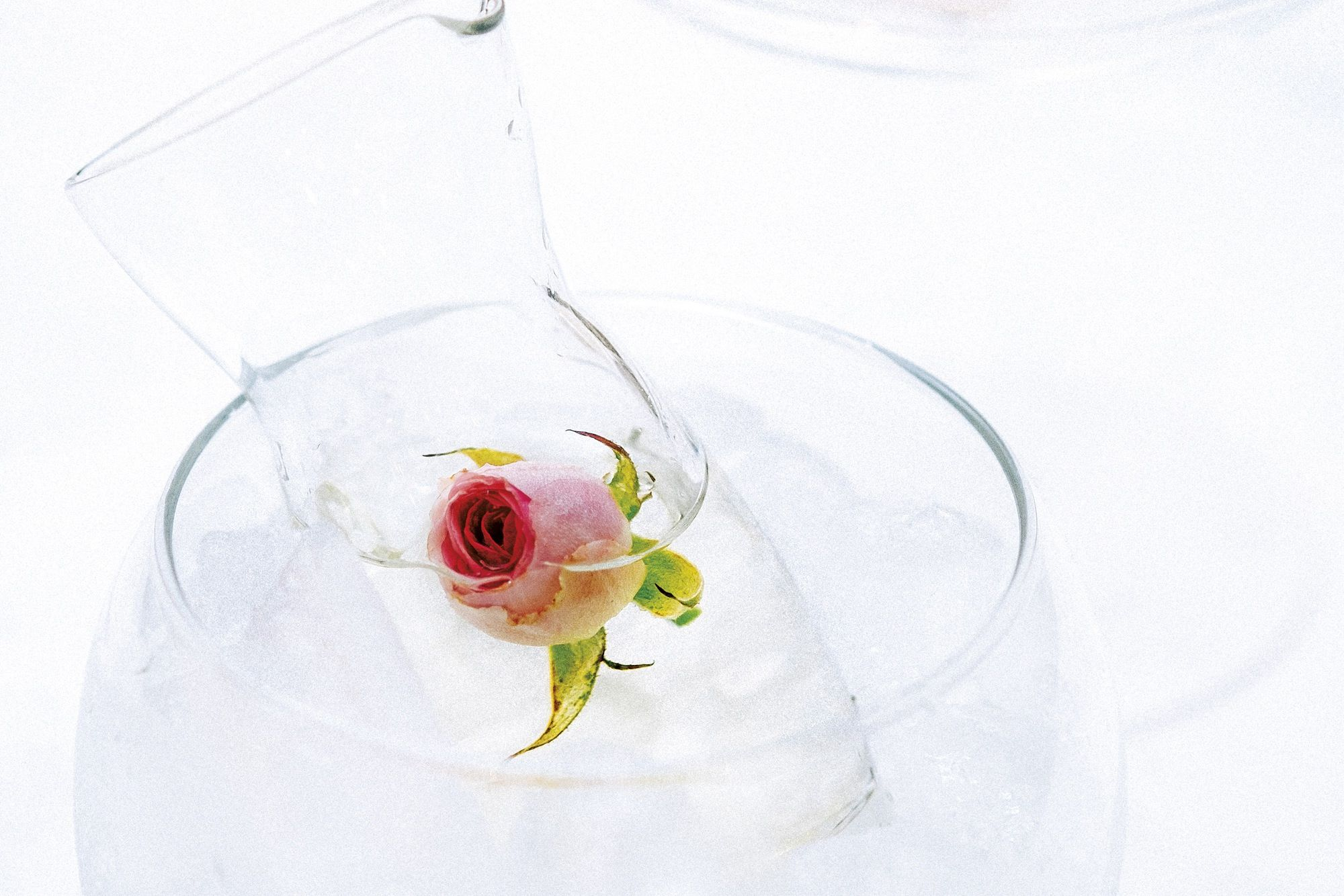 How to Make a Rose Garden Mocktail with Jasmine Tea and Lemonade