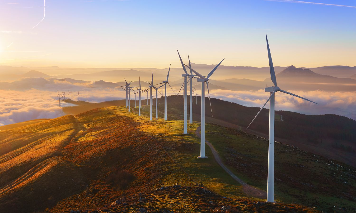Why You Should Invest In Green Technology