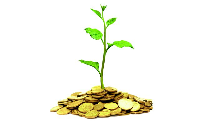 Ethical Investing: Making Money by Doing Good