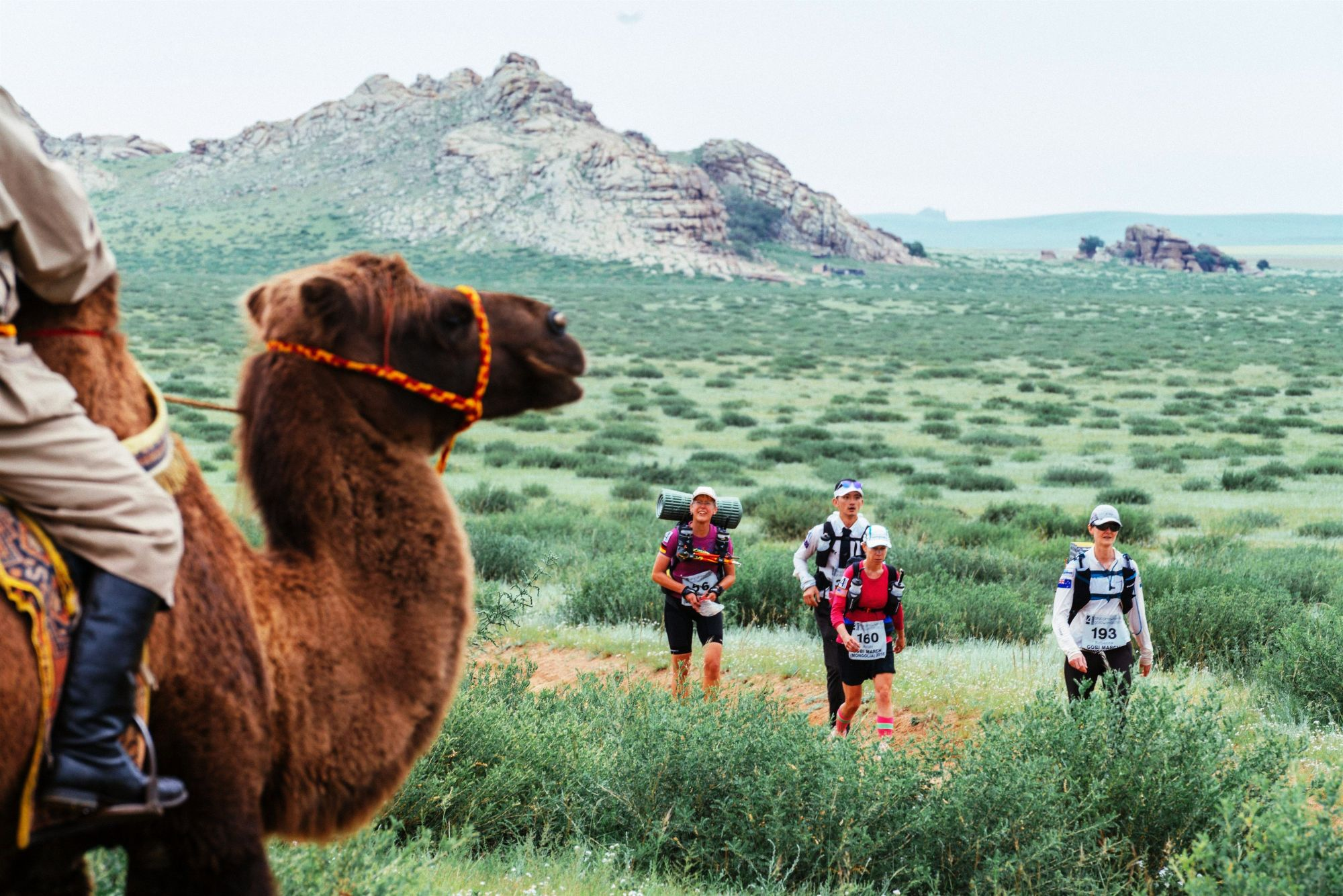 10 Scenic Marathons And Races In Asia Worth Travelling For