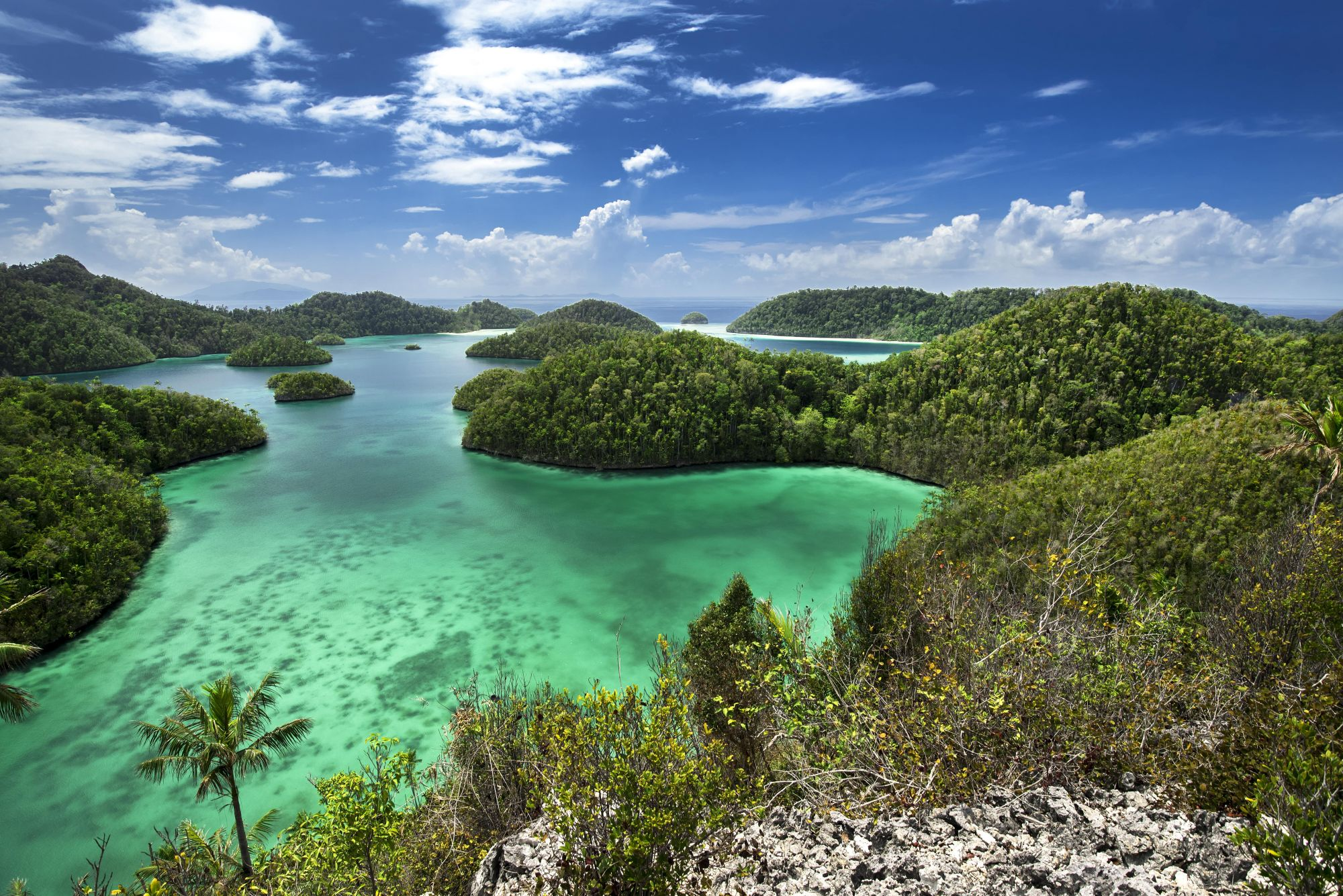 Prana By Atzaro: Exploring Raja Ampat On The World's Most Luxurious Liveaboard