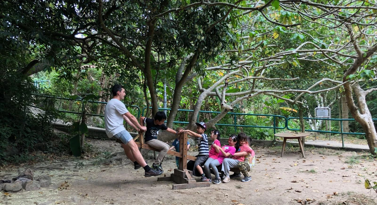 The Great Outdoors: 3 Forest School Activities For Kids In Hong Kong