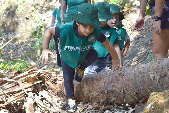 6 Forest School Programmes In Hong Kong