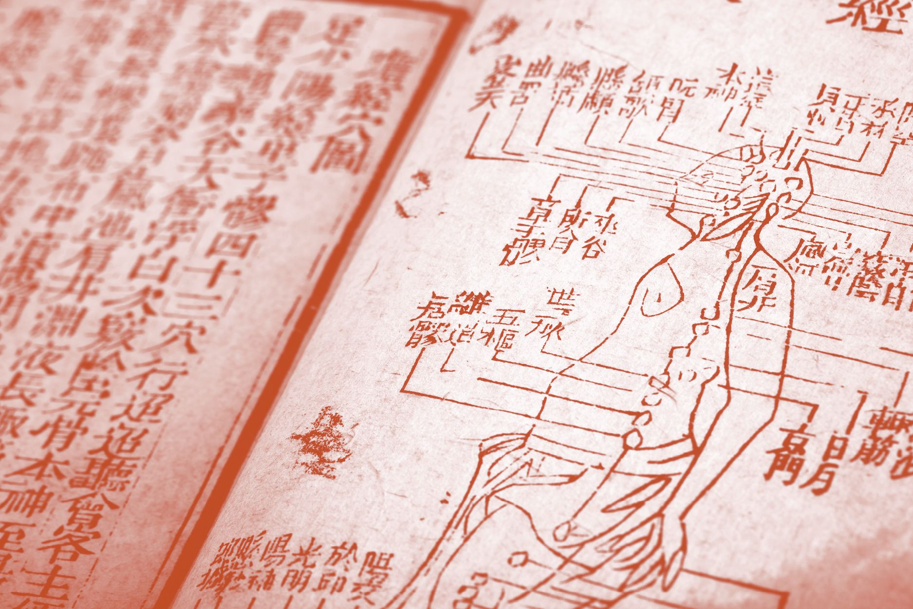 In Good Health: How Traditional Chinese Medicine Is Evolving In Leaps And Bounds