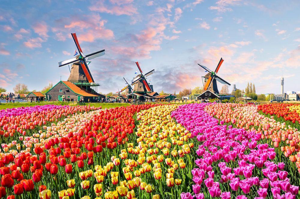 The Netherlands' windmills (photo: Getty)