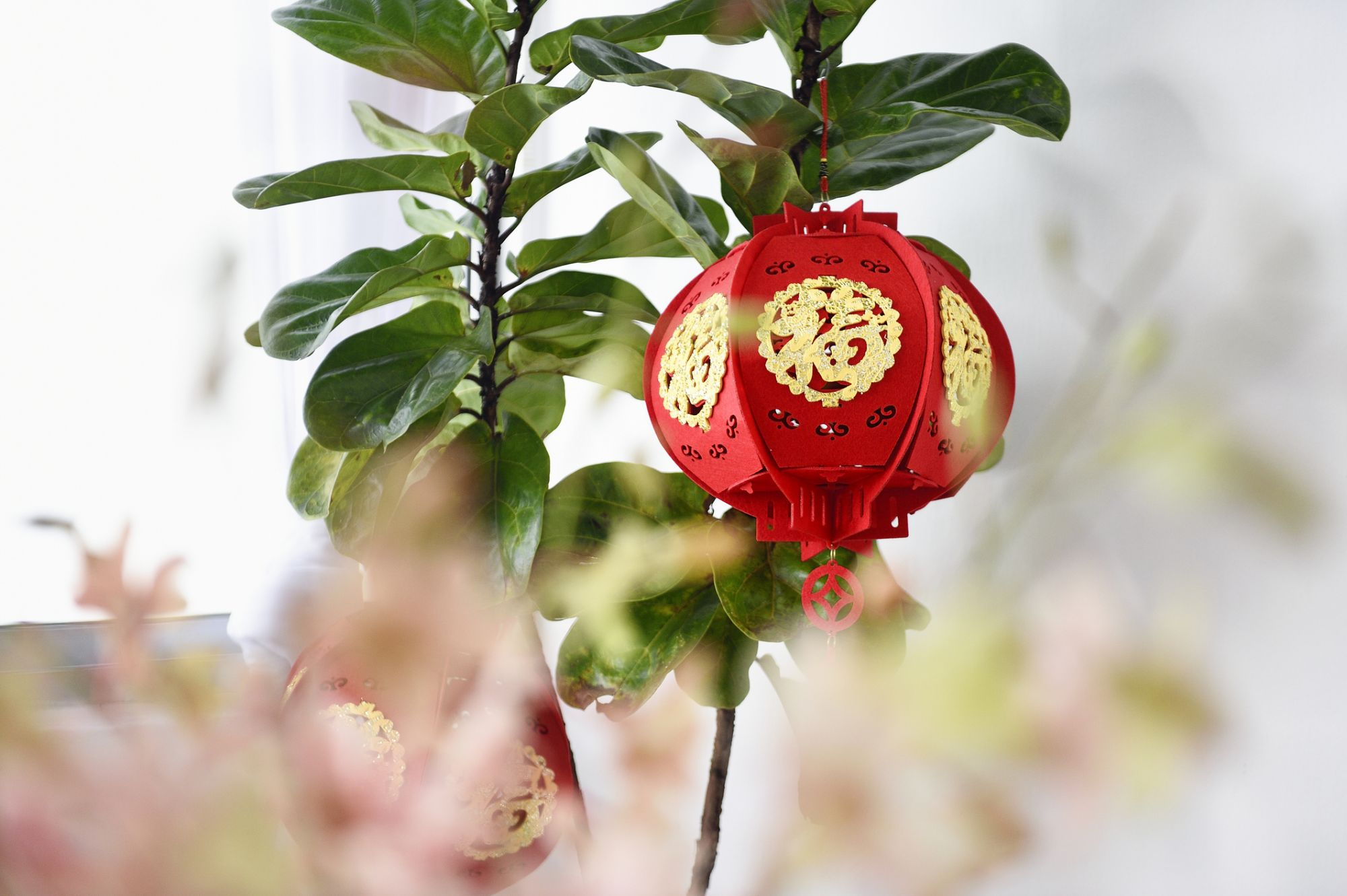 Red And Rat: 7 Luxurious Chinese New Year Decorations For Your Home In 2020