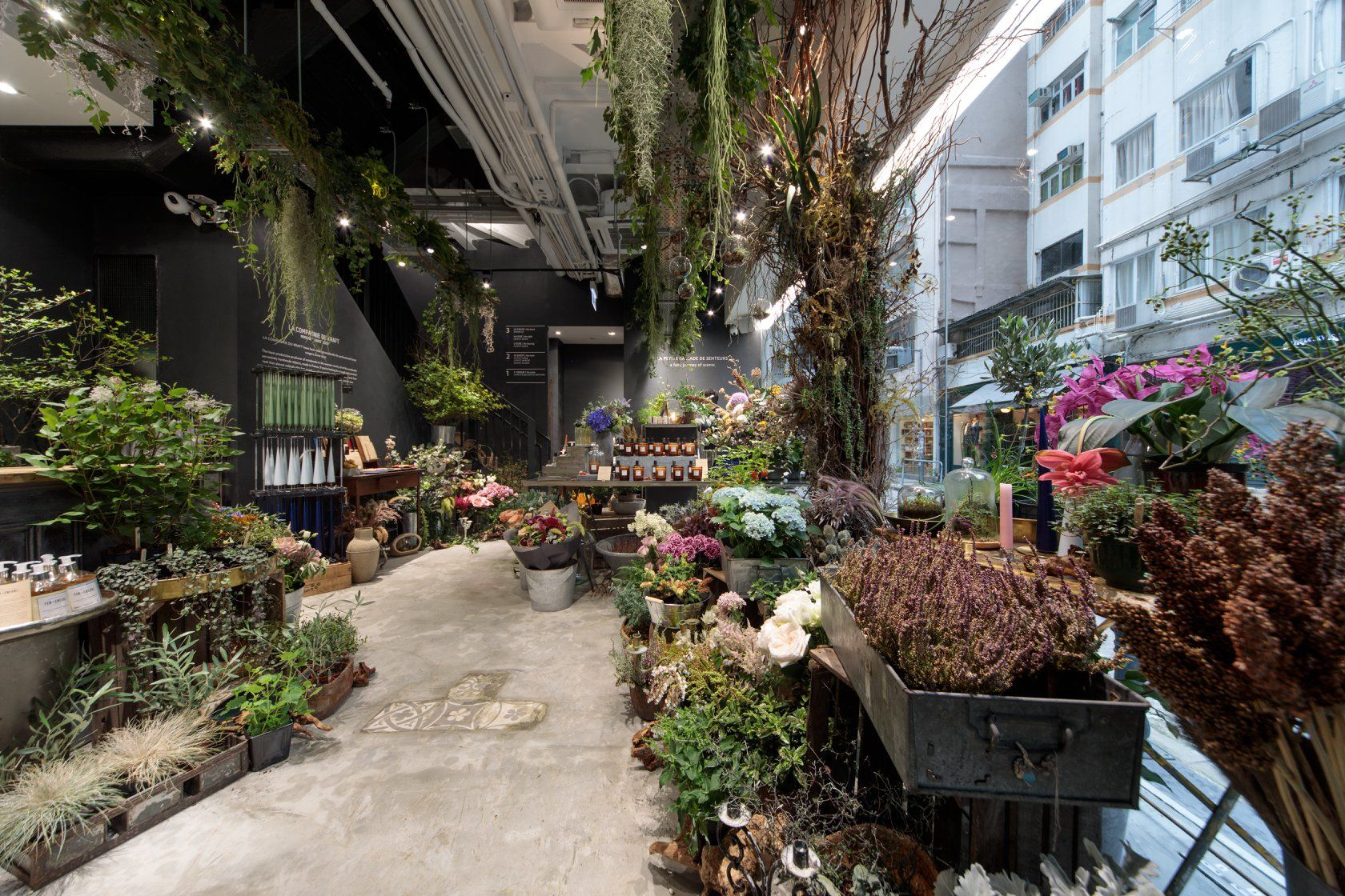 Fancy Plants: 5 High End Plant Stores In Hong Kong
