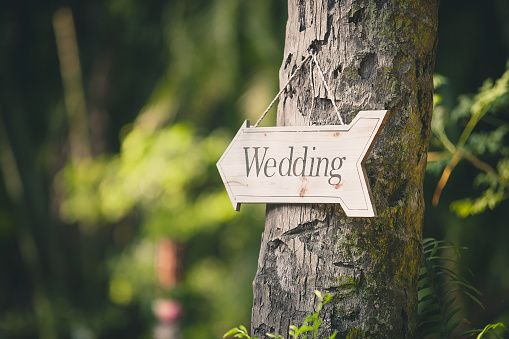 Postponing A Wedding: Expert Tips For The Process