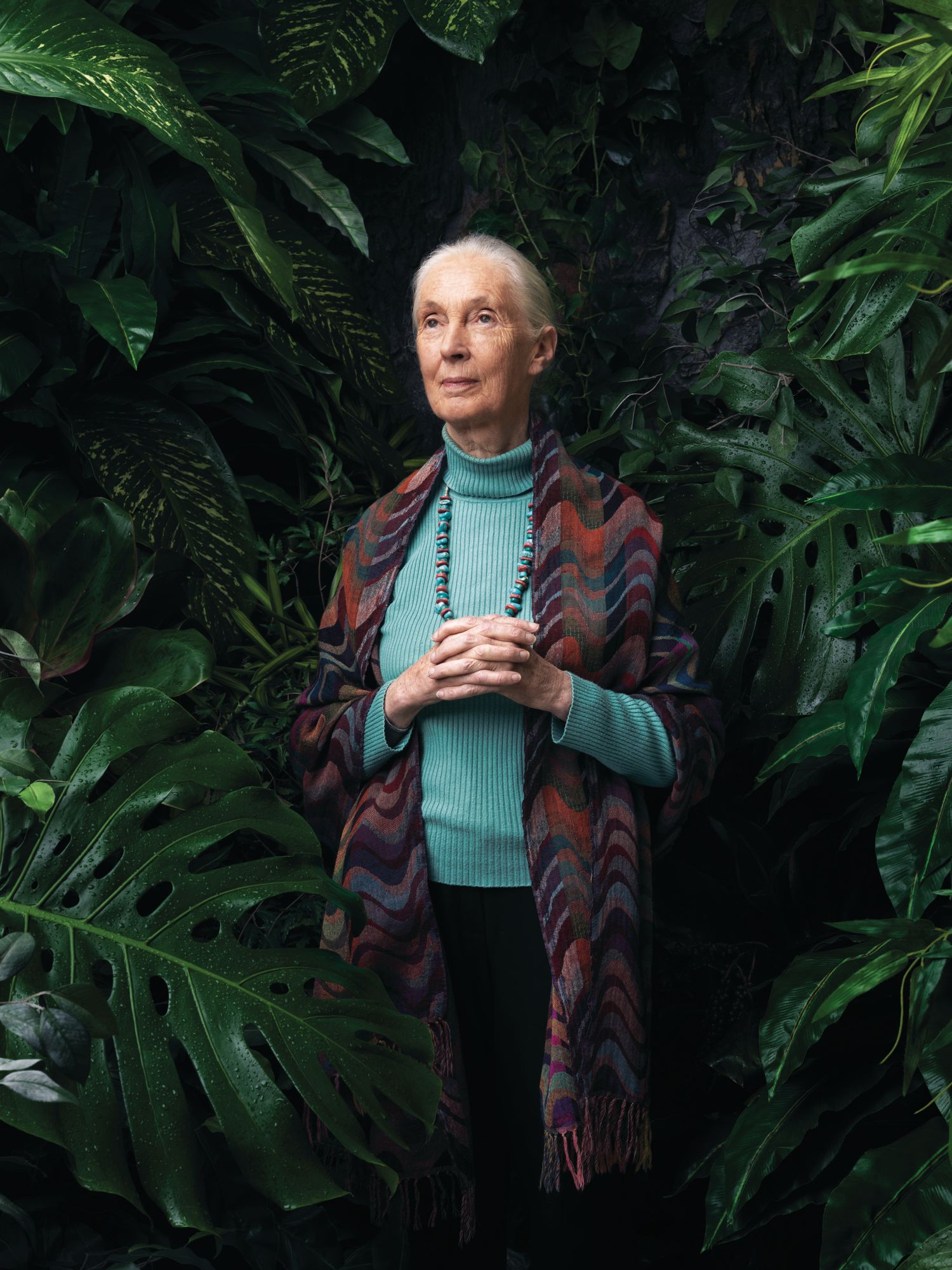 Jane Goodall on Hope, Her New Book and Why Humans And Chimpanzees Are Similar