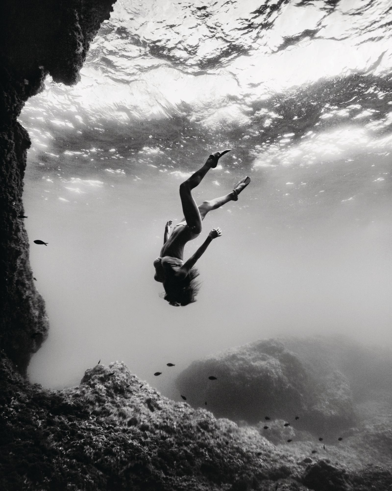 The Woman And The Sea: Female Free Divers Take Conservation To New Depths
