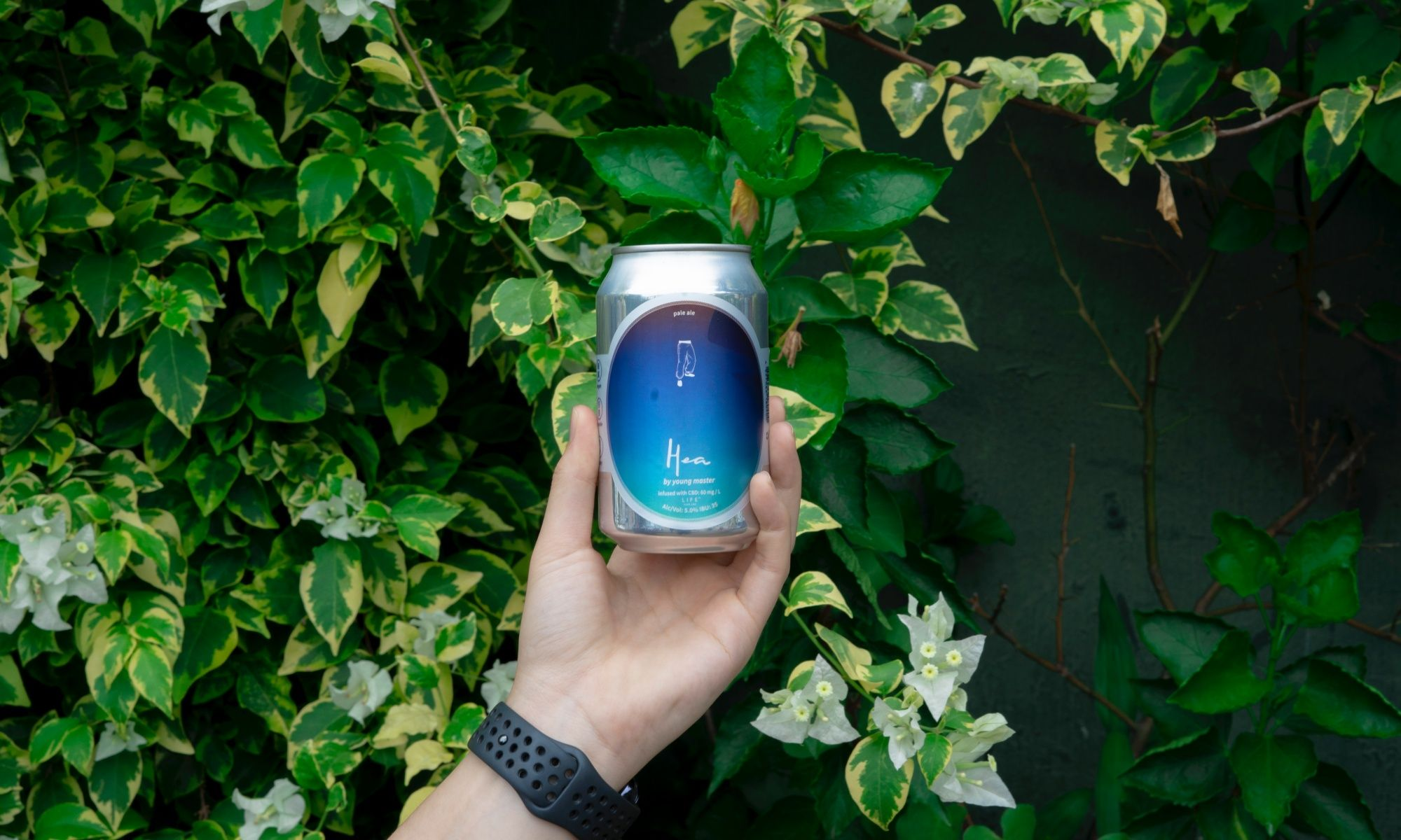 CBD Beer Is Here In Hong Kong! Here's What You Need To Know