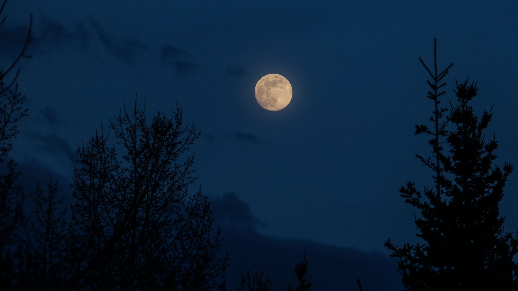 A Rare Blue Moon Will Rise On Halloween This 2020