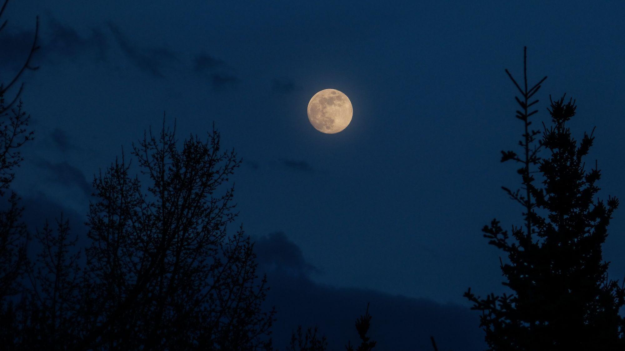 天文迷請筆記! 罕見「藍月亮」星象今年10月31日現身