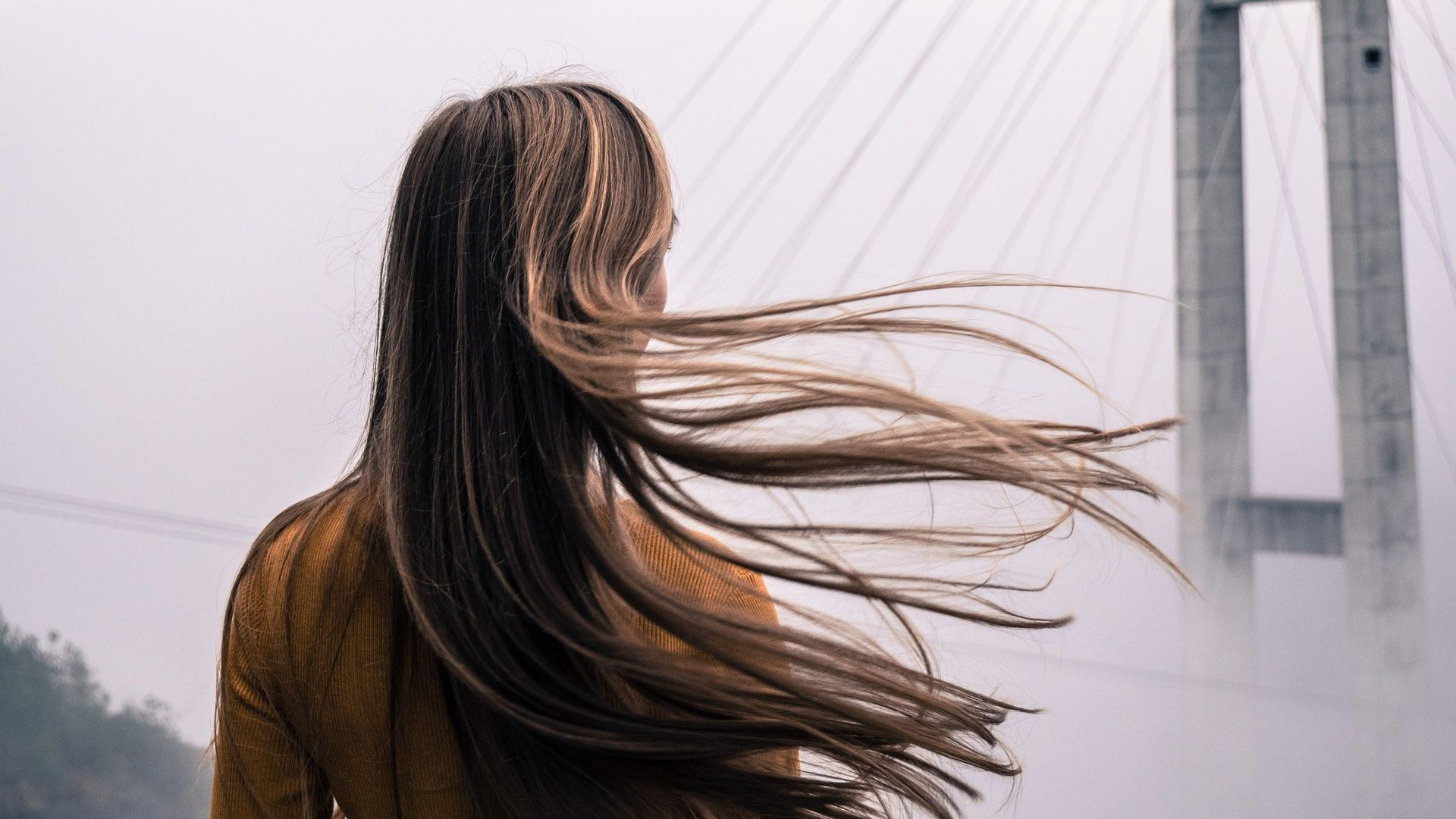 7 Nourishing Hair Oils For A Healthy, Hydrated Mane