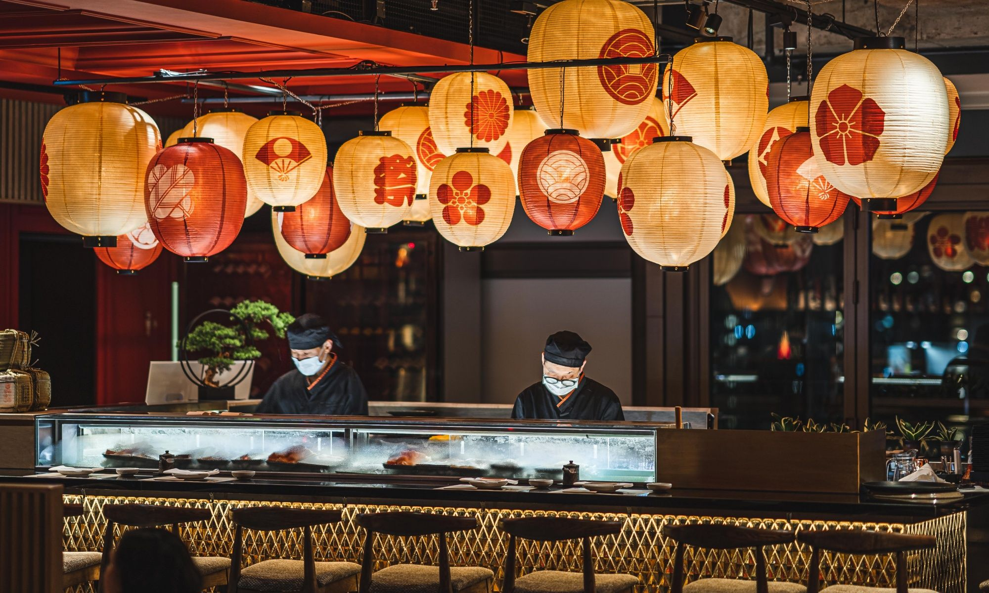 Kyoto Joe Launches Brand New Dinner Menus