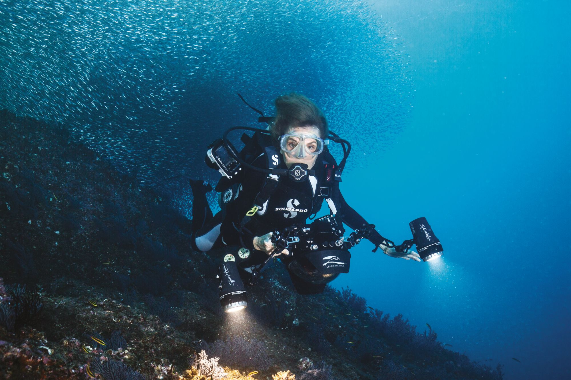 Rolex Ambassador Sylvia Earle On Her Mission To Protect The Ocean