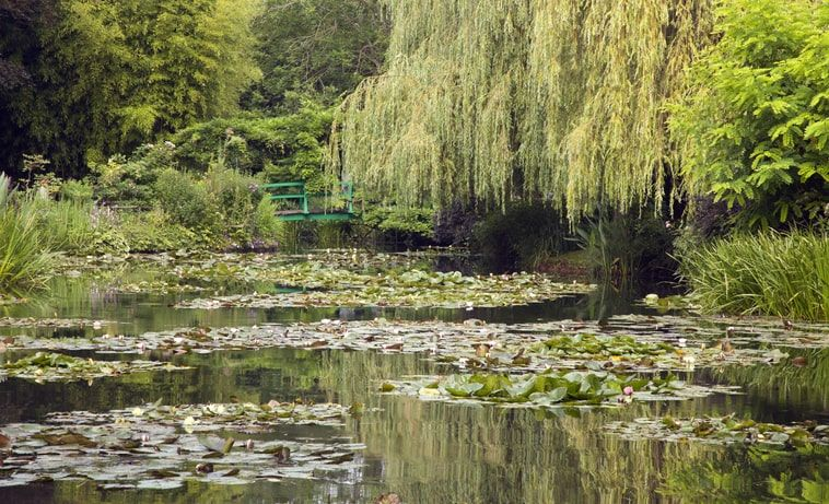 Lilypond in Monet's Garden, Giverny, France