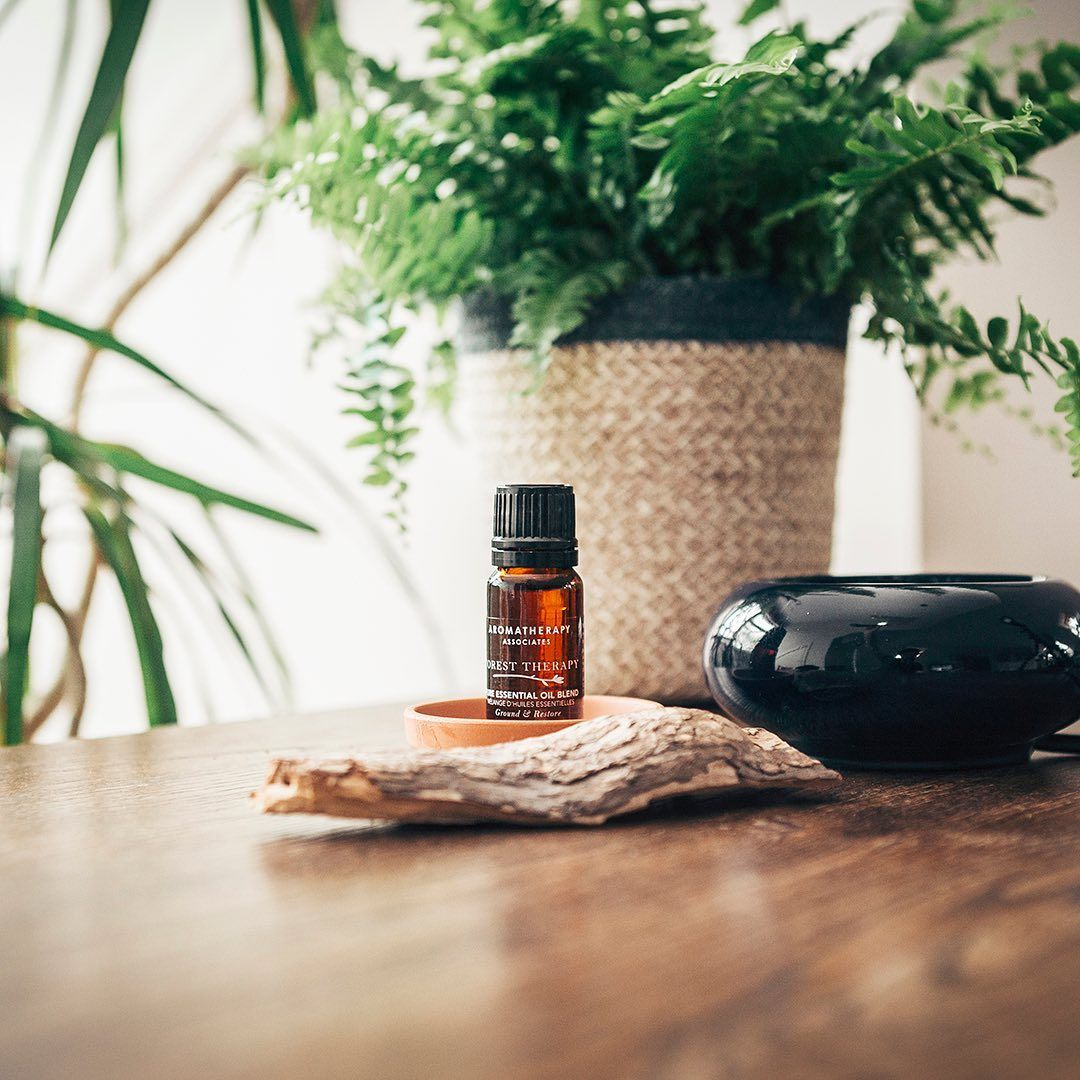 Essential Oils: The Uses, Benefits And Products To Try