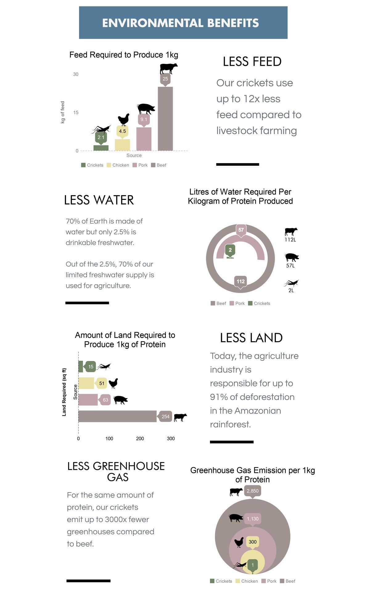 Infographic courtesy of Ento.