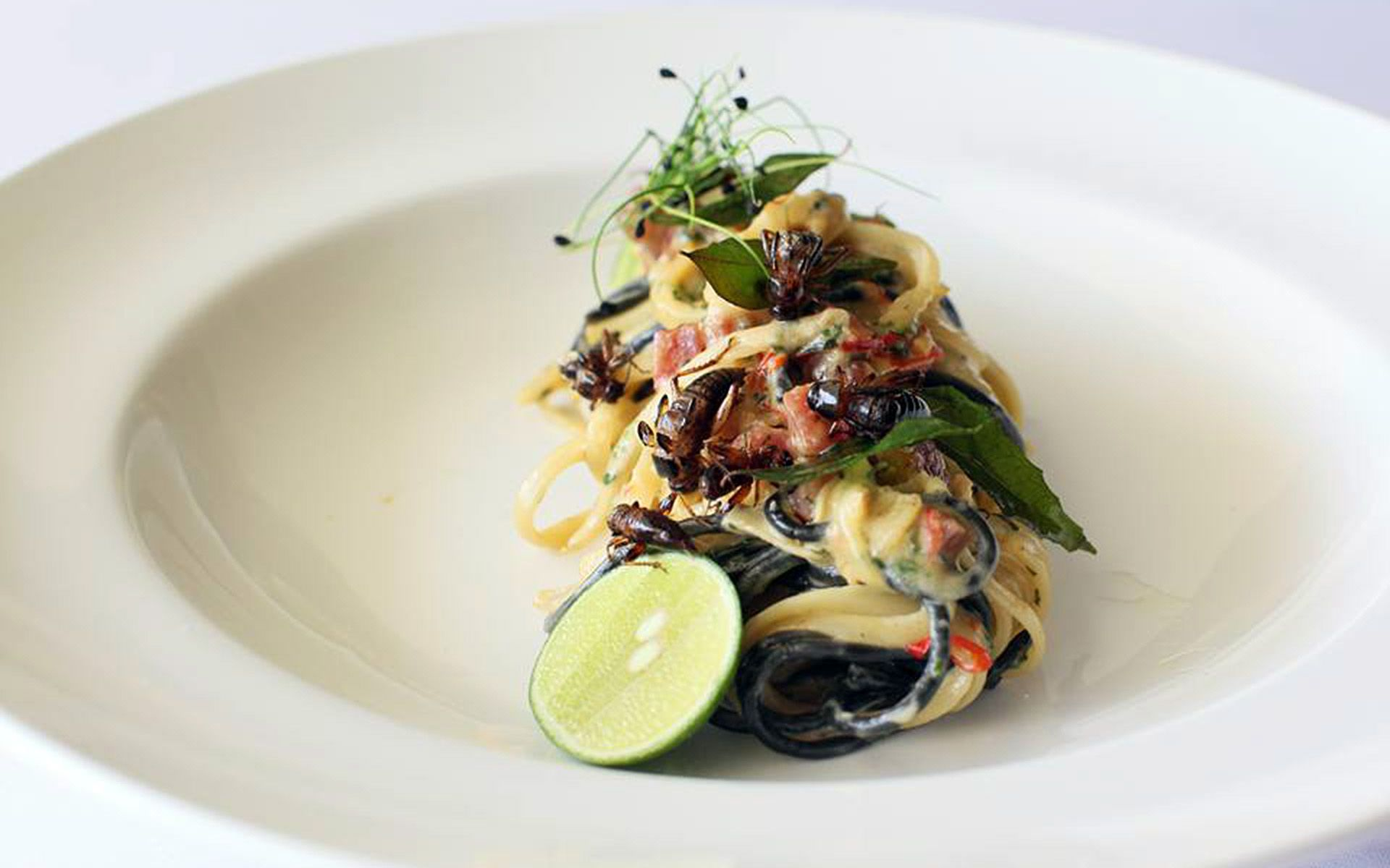 Gastro Bar by Burgeon, which closed its doors in July 2016, was likely the first restaurant in Selangor to serve insects in a fine dining setting. Pictured here is their Curried Cricket Carbonara.