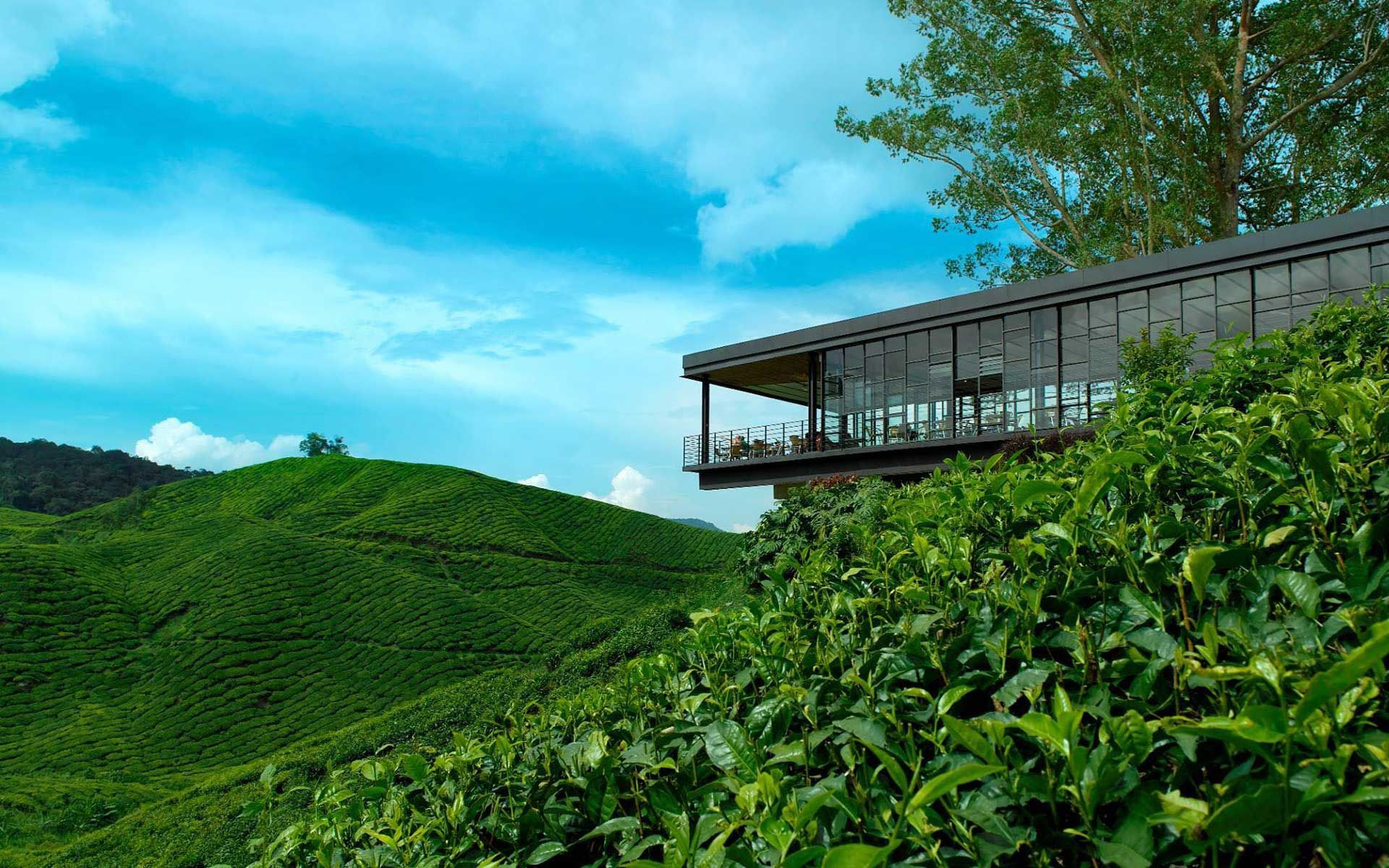 These 6 Restaurants & Bars Across Malaysia Have The Best Views