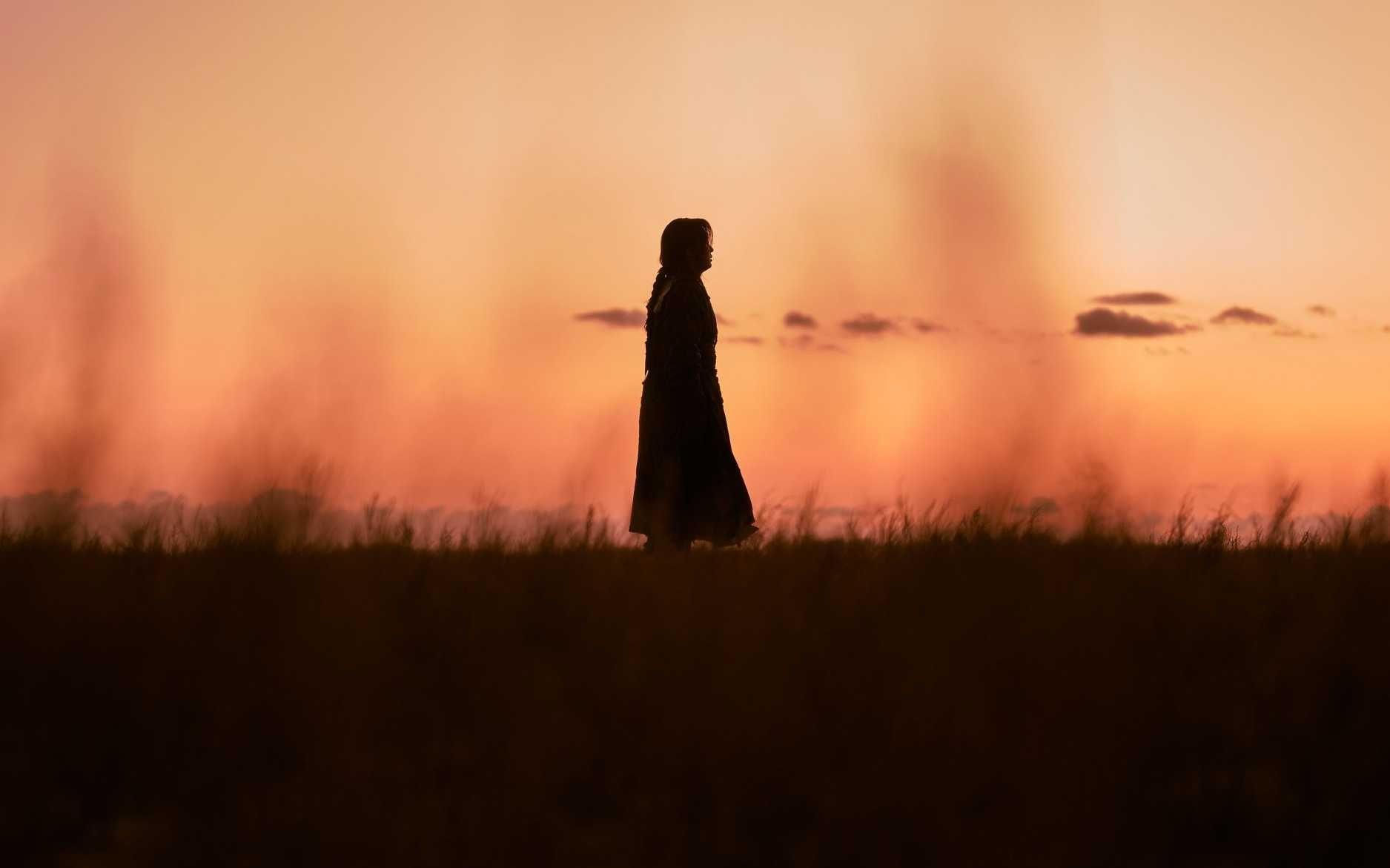 Netflix: 3 Revelations From 'Kingdom: Ashin Of The North'
