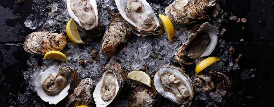 Fresh Catch: Oysters Galore at The Fireplace