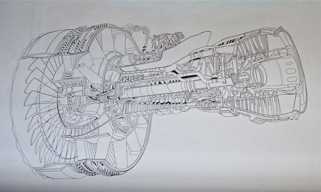 Anatomy to Flight