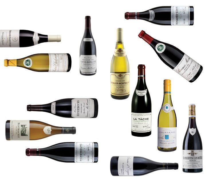 Investing On Burgundies