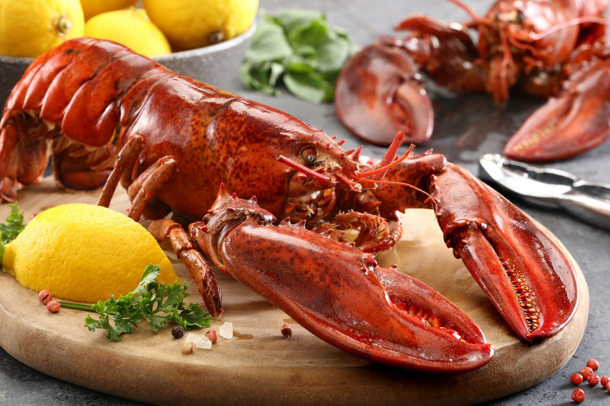 Boston Lobsters Indulgence At The Fireplace