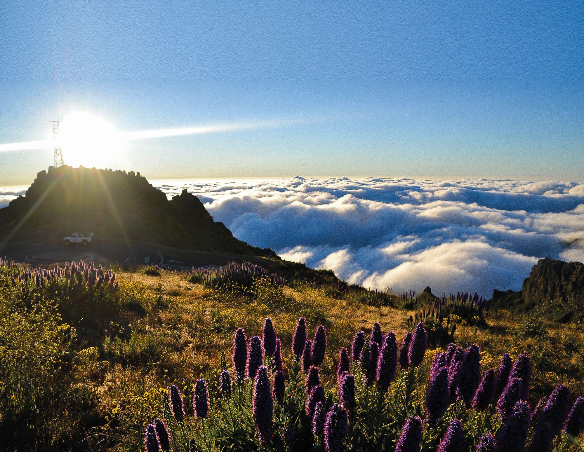 Madeira: A Portuguese Paradise