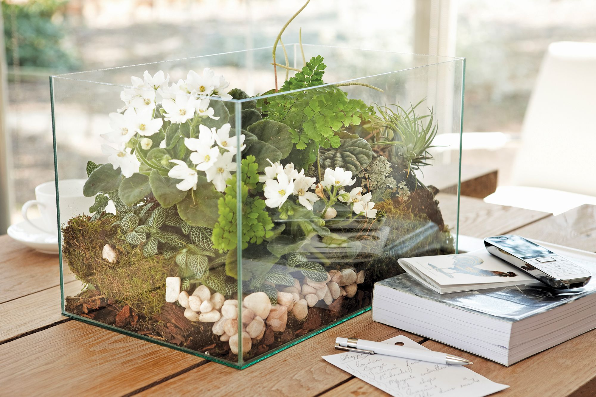 Here's How To Create Your Own Miniature Biotope For Your High-Rise Apartment
