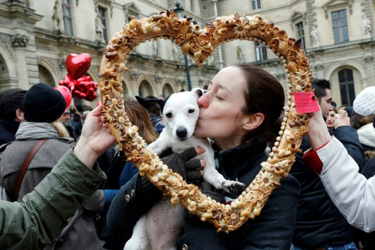 What makes dogs so special? Science says Love