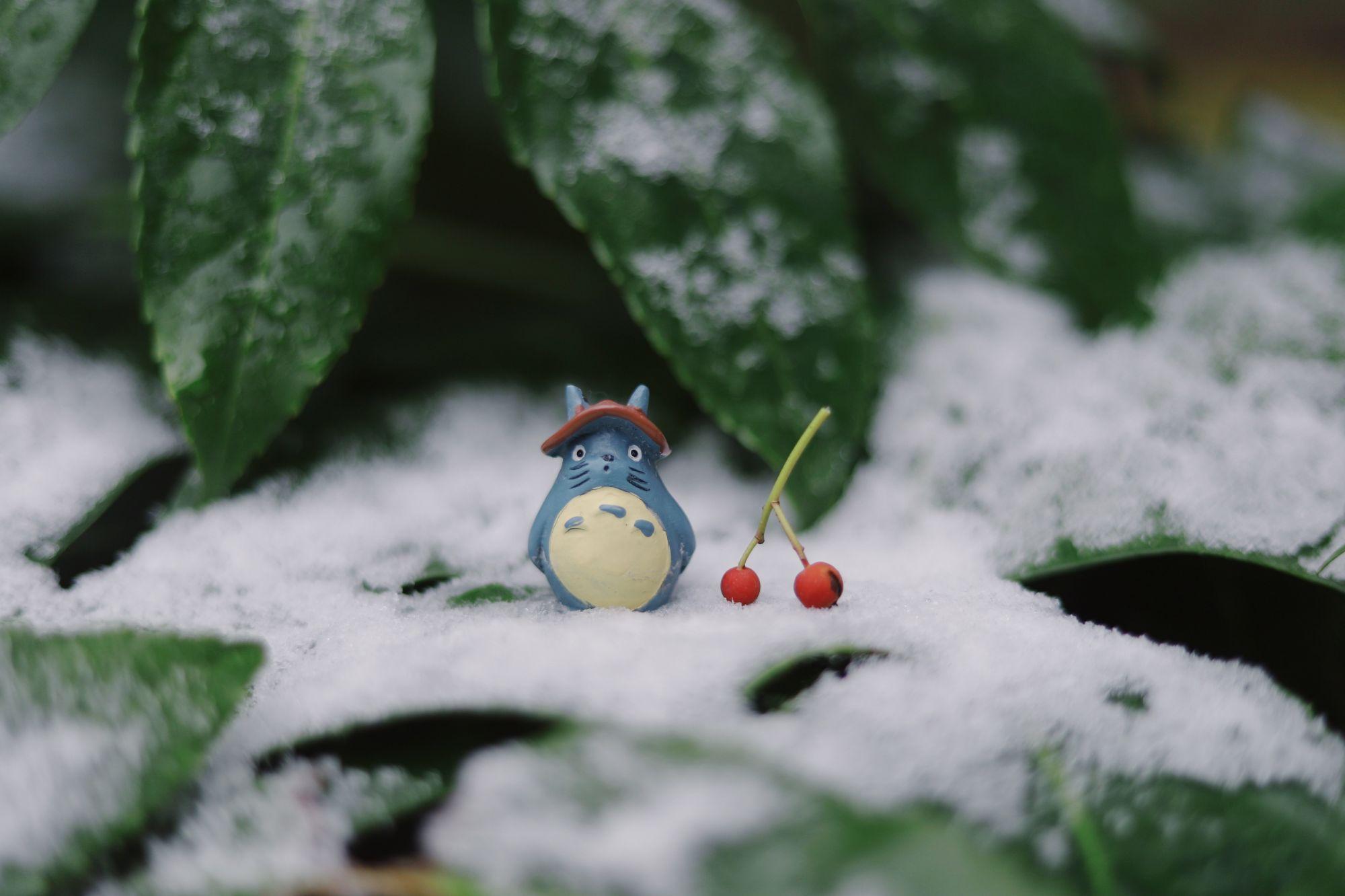 Learn To Draw Totoro With Studio Ghibli