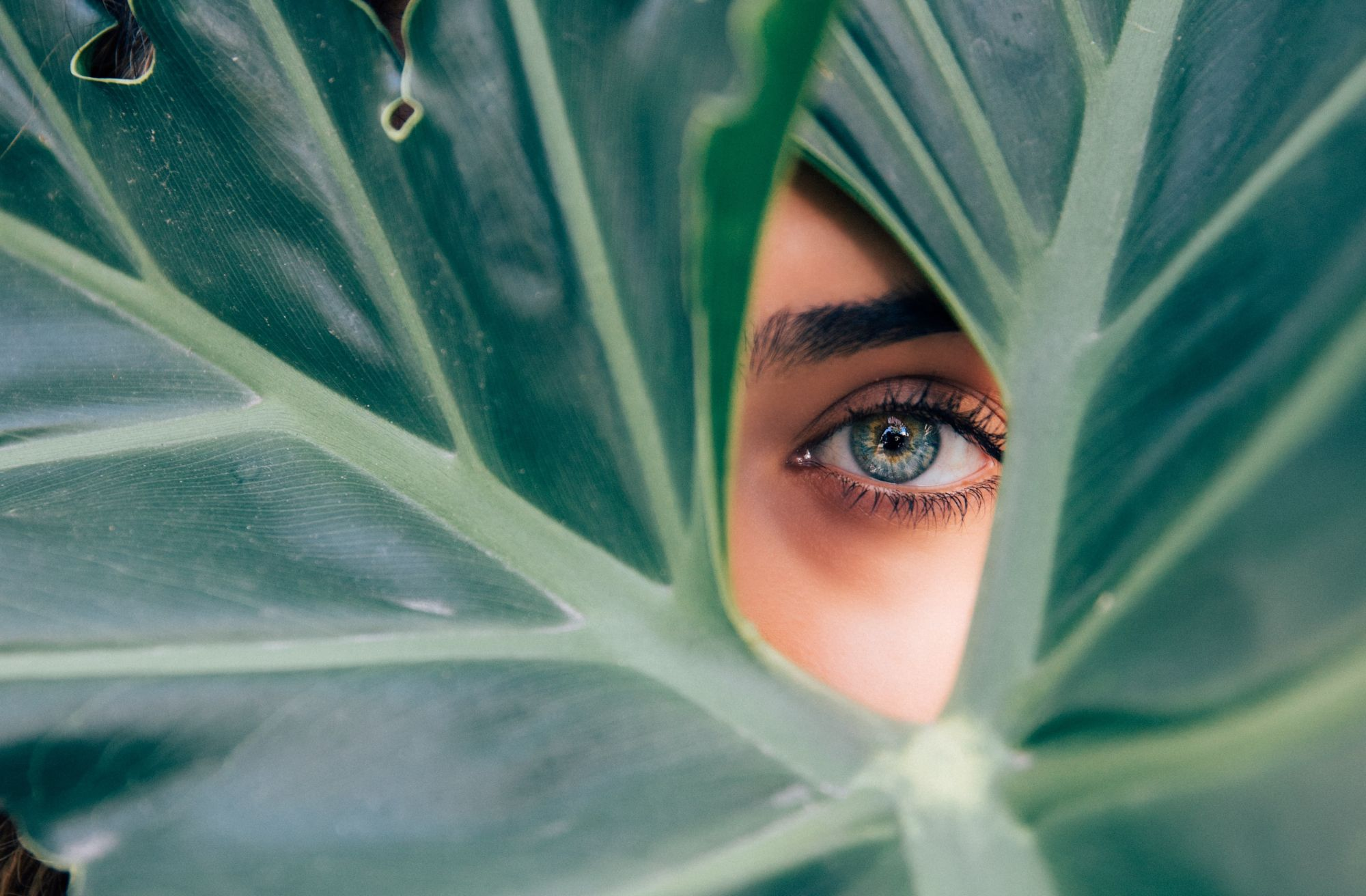 Here's How L'Oréal Is Championing A Sustainable Future For Beauty