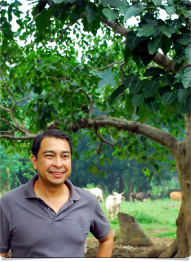 Urban Farming, Plant Parenting & Gardening Tips From Expert Nicolo Aberasturi Of Down To Earth Farms