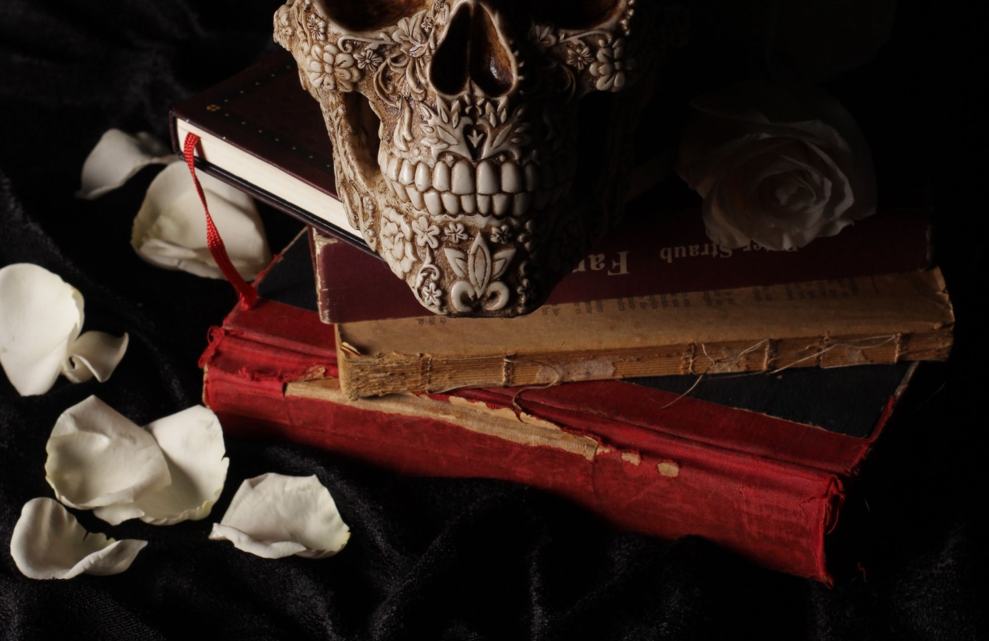 Vampires, Witches, and Werewolves: Books To Read About Your Favourite Ghosts And Ghouls