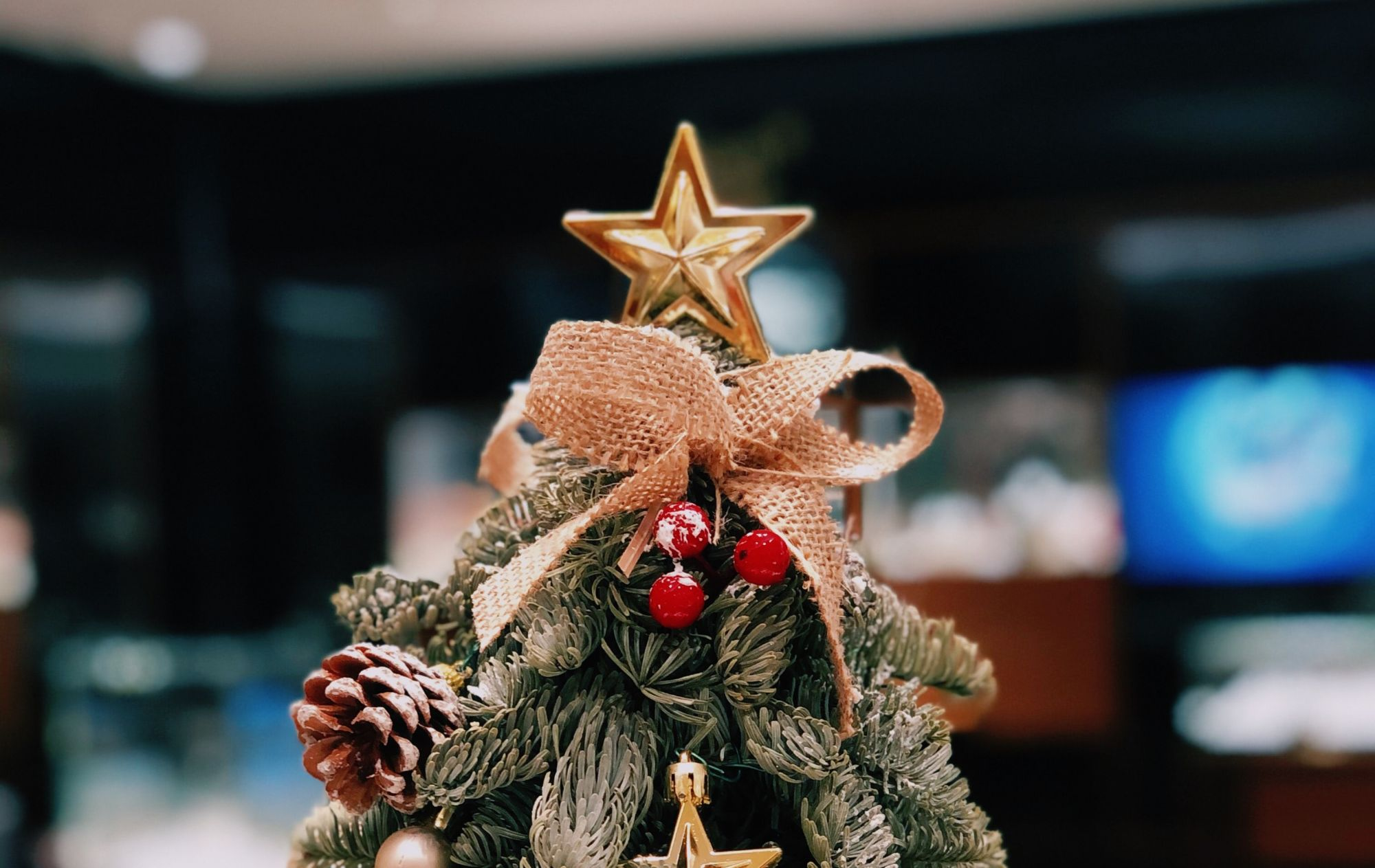 7 Christmas Tree Decor Ideas That We Love