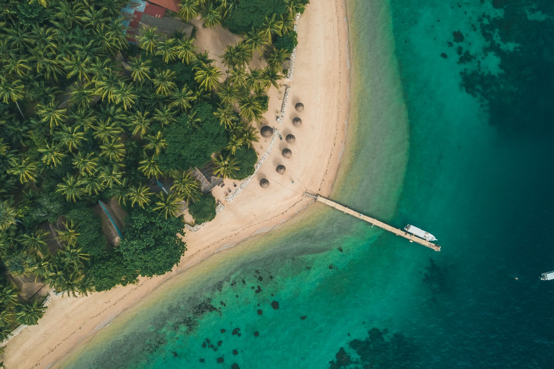 Flower Island Resort, Palawan: Why You Should Visit This World-Class Destination
