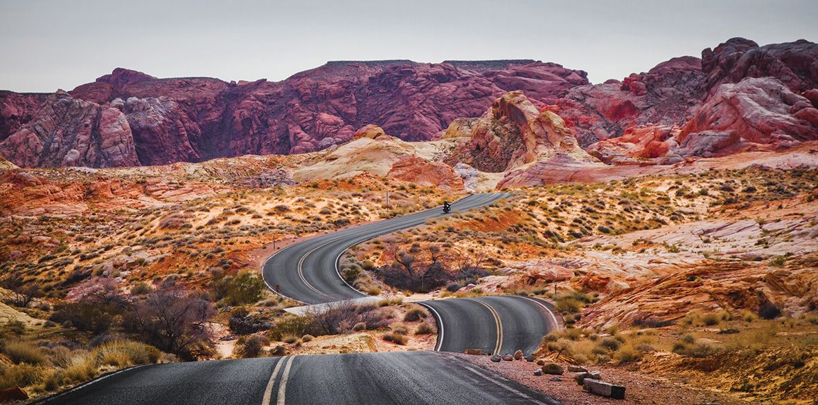 Which F1 Racer Would You Take On A Road Trip?