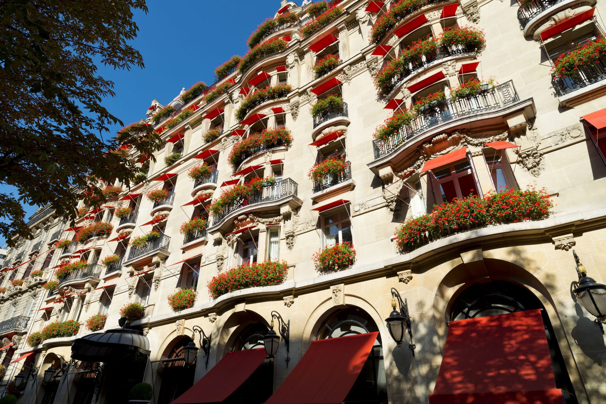 Hotel Review: Tatler Checks Into… Hôtel Plaza Athénée (With A Tatling In Tow)