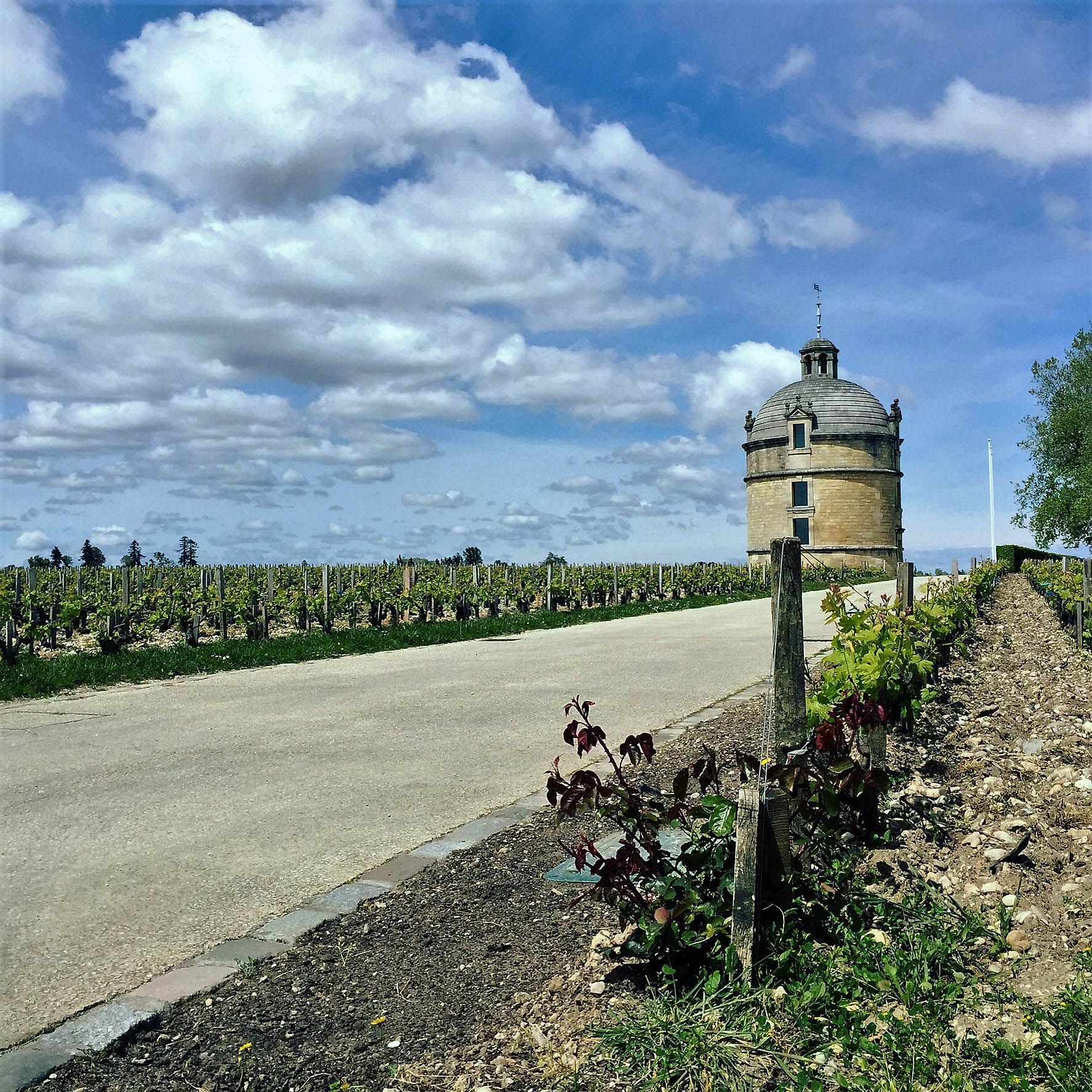 There's A Bordeaux 2015 For Everyone, Says Lisa Perrotti-Brown