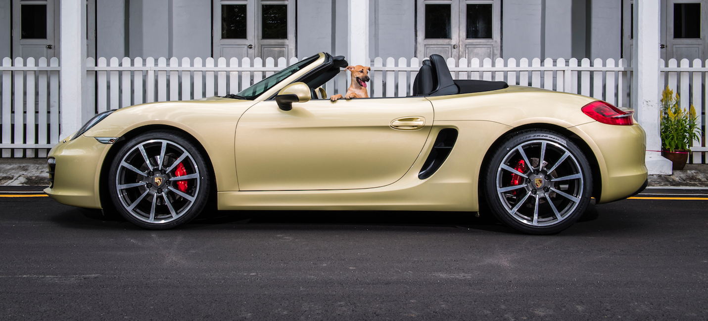 Porsche Celebrates The Year Of The Dog In The Cutest Manner