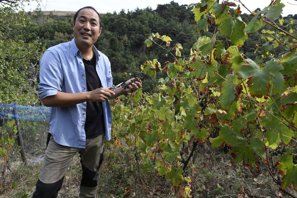 'Extreme' Japanese Winemaker Is A Natural