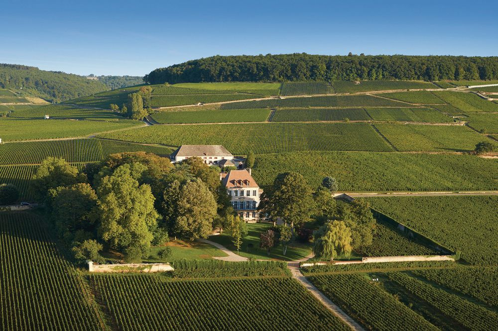 Continuing the Great Legacy of the Maison Louis Latour Burgundy