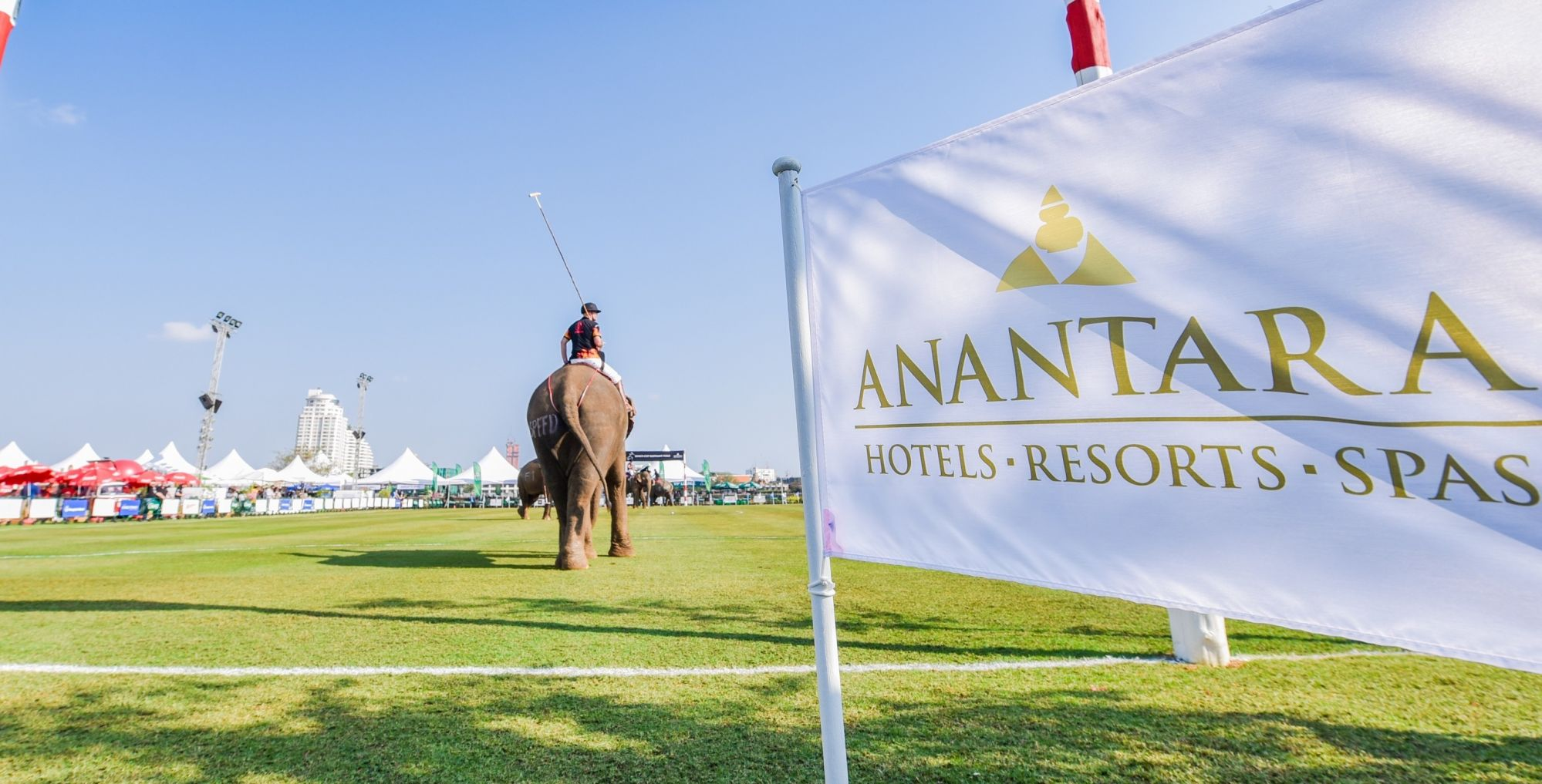 4 Things To Know About the Anantara King's Cup Elephant Polo Tournament