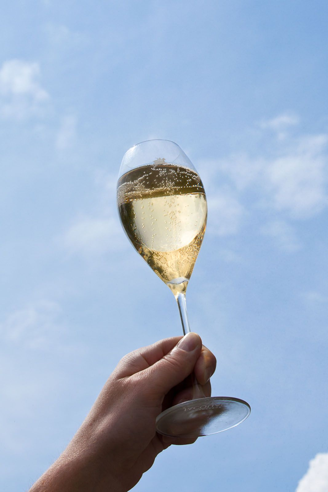 7 Of The Rarest Champagnes In The World