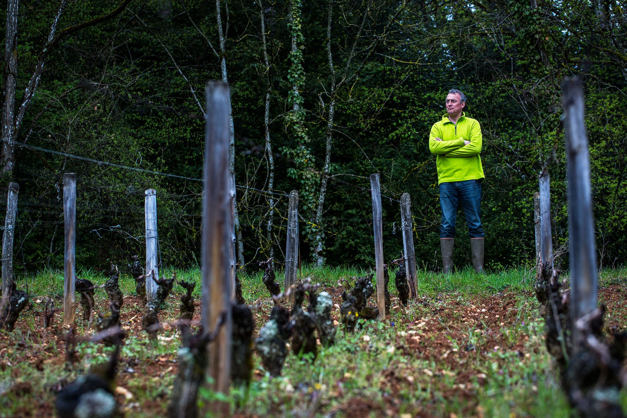 Ma Cuisine Puts The Spotlight On Organic Wines