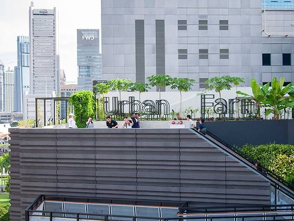 Urban Rooftop Farming Is Becoming More Than Just A Trend In Singapore